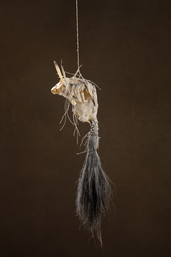 N44, 2011 20 x 17 x 65 cm / 7.9 x 6.7 x 25.6 inches Mixed Media / goat Skull