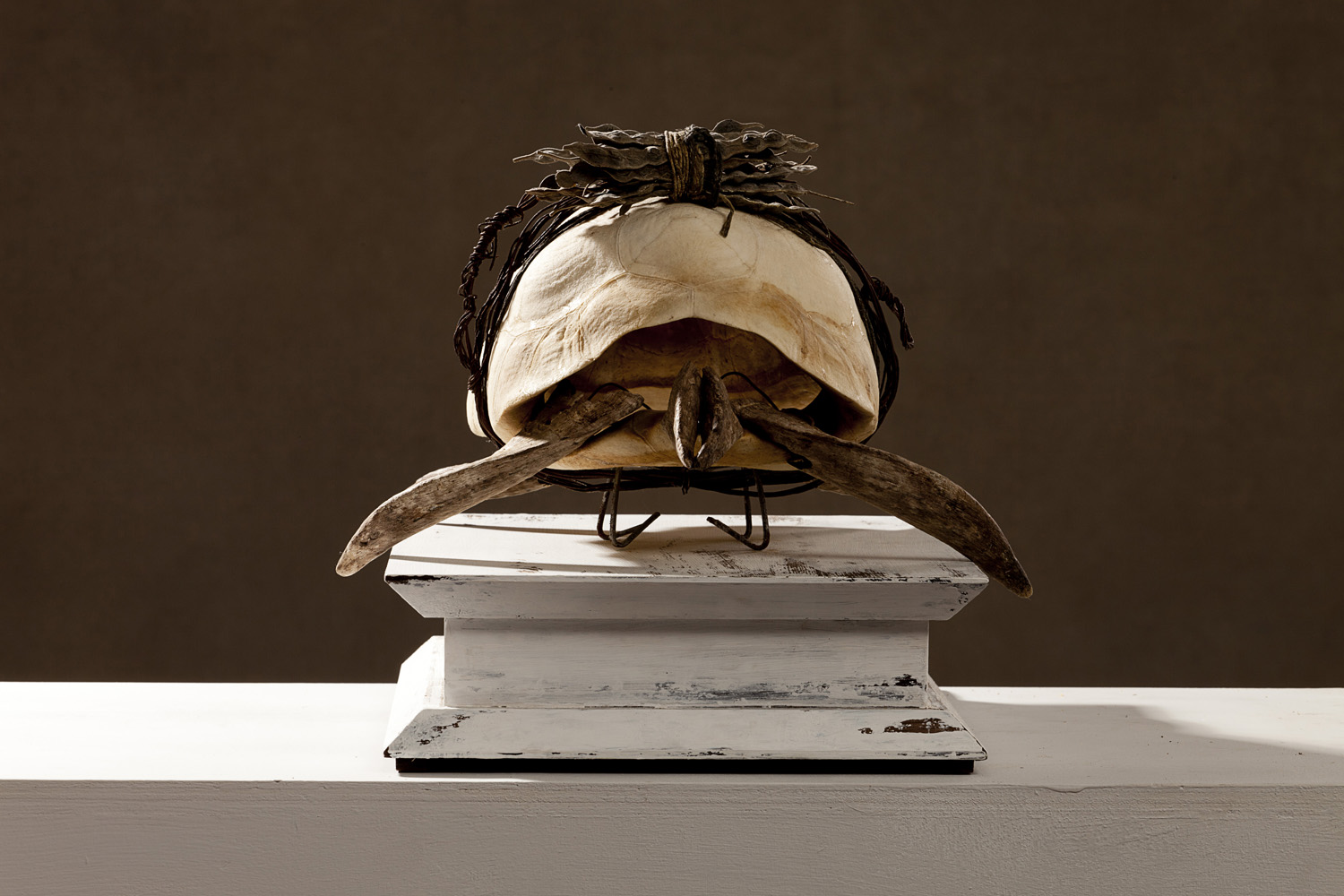 Jabuti Piranga, 2011 37 x 33 x 20 cm / 14.6 x 13 x 7.9 inches Mixed Media / Turtle Carbonaria
