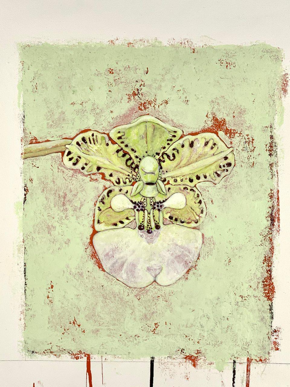 Orchis Mc Kenna   37x30 cm, 2019, Pigments / Canvas